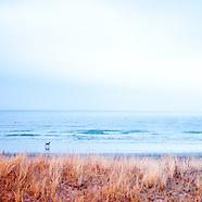 Sea, See