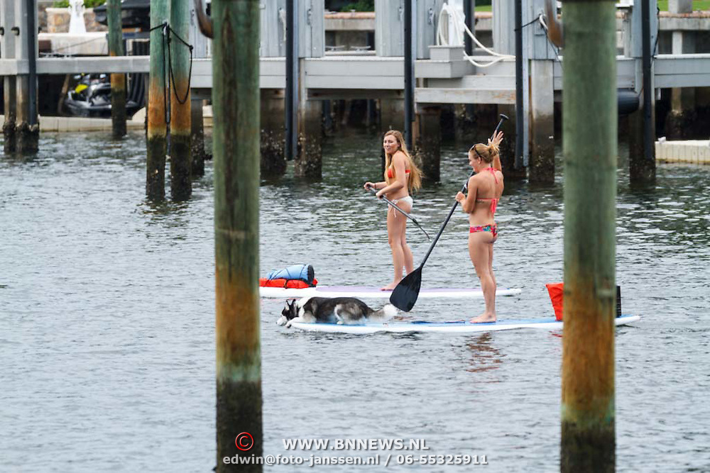 USA/Miami/20150727 - Miami, Deerfield Beach, meisje op een surfboard aan het peddelen met een hond