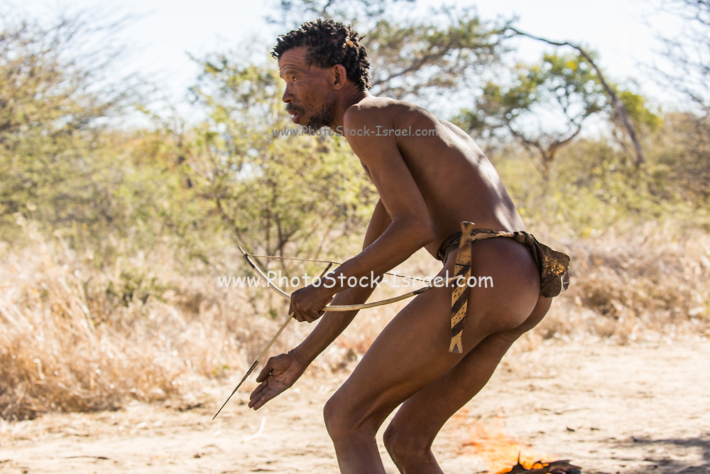Bushman hunting with hand made Bow and Arrow. Photographed in Namibia