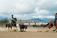 Team Roping, Wilsall Rodeo, Montana, brothers J.R. and Joe Winter, Crazy Mountains, <br /> MODEL RELEASED, PROPERTY RELEASED