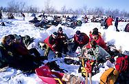 Samis (lap people),  Lunch in the snow in Kautokeino  Lapland  Norway        Les Samis (lapons); Pique nique dans la neige  Laponie,   Norvege       L004773  /  R00330  /  P111322
