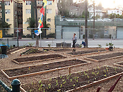 Silver Lake, Los Angeles, California: The Micheltorena school's garden built on a former parking lot, is open to the community as well (photo: Ann Summa).