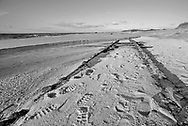 The recently uncovered Cape May train tracks are visible near Higbee Beach and Cape May Point Saturday, December 03, 2016 in Cape May Point, New Jersey. (Photo by William Thomas Cain/Cain Images)