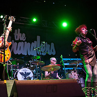 Edinburgh new wave band 'The Rezillos team up with punks stalwarts 'The Stranglers' to bring an excellent night of music to Glasgow's O2 Academy