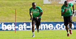 21.05.2010, Dolomitenstadion, Lienz, AUT, WM Vorbereitung, Kamerun Training im Bild Feature bet-at-home Werbebande, EXPA Pictures © 2010, PhotoCredit: EXPA/ J. Feichter / SPORTIDA PHOTO AGENCY