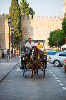 A man and boy ride down a street in a horse carriage in Seville, Spain