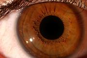 Belo Horizonte_MG, Brasil...Detalhes de um olho...A eye detail...Foto: LEO DRUMOND / NITRO