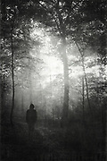 man in misty wet forest