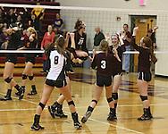 Mount Vernon's Marissa Stark (8), Amanda Petrick (6), Hannah Whitley (20), Claire Pettinger (3), Morgan Melchert (1), and Kate Lynott (5) celebrate a score during the WaMaC Tournament semifinal game at Mount Vernon High School in Mount Vernon on Thursday October 11, 2012. Solon defeated Mount Vernon 26-24, 25-22.