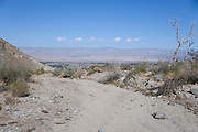 a small mountain dirt road San Jacinto Mountains near Palm springs USA