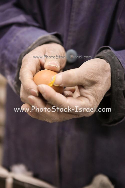 China, Tianjin Food store Fresh eggs