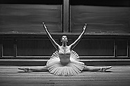 Classic ballerina dancing inside a classroom at Yale University.  ( October 17, 2012. Kike Calvo via AP images )
