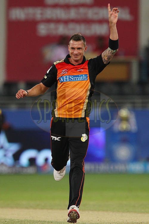 Dale Steyn of the Sunrisers Hyderabad celebrates the wicket of Corey Anderson of the Mumbai Indians during match 20 of the Pepsi Indian Premier League Season 2014 between the Mumbai Indians and the Sunrisers Hyderabad held at the Dubai International Stadium, Dubai, United Arab Emirates on the 30th April 2014<br /> <br /> Photo by Ron Gaunt / IPL / SPORTZPICS