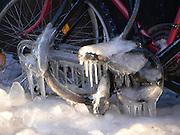 Cyklas om vintern