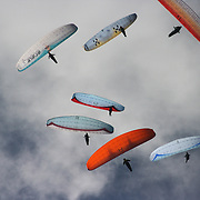 149 of the World's best paragliding pilots from 39 nations descended on the small country town of Manilla near Tamworth in northern New South Wales, Australia to contest the 10th FAI Paragliding World Championships during March 2007. The drought stricken area is renowned for it's great cross country flying from the Mount Borah hillside and over two hectic weeks, numerous incidents and mixed weather, the pilots were able to fly five tasks to decide the winners in what proved to be an extremely close contest.. The Men's competition was won by Great British pilot Bruce Goldsmith with Jean-Marc Caron of France finishing second just seventeen points behind with Thomas Mccune of USA finishing third. The women's competition was won by Petra Slivova of Czech Republic with Viv Williams of Australian just fifteen points behind and New Zealand pilot Harmony Gaw finishing third. .In the team event Czech Republic finished first followed by France and Switzerland...Pilots during competition..