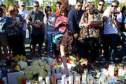 Dec. 1, 2013 - CA, USA -<br /> <br /> Paul Walker Crash Site Becomes Memorial<br /> <br /> People look at a memorial for Paul Walker and Roger Rodas, Sunday, December 1, 2013, at the scene of their fatal crash site in Valencia. <br /> ©exclusivepix