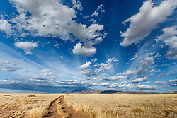 Prairie and sky in central New Mexico, USA.