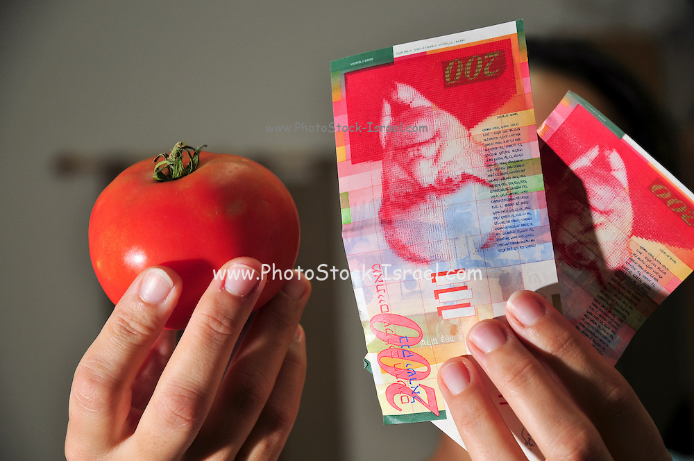 Cocktail tomatoes cultivated for their size, colour and durability. Hand holding money