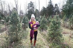 LOUISVILLE, Ky., -- Gemma has her first Thanksgiving at Auntie J and Mimi's, we harvest a Christmas Tree maybe for the last time since the owners of Meyer Tree Farm sold a portion of their land to fund their retirement house, Friday, Nov. 24, 2017 at the Komis Kitty Palace in LOUISVILLE.