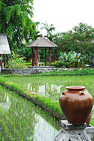 Rice paddy scene with a ceramic pot in the foreground.