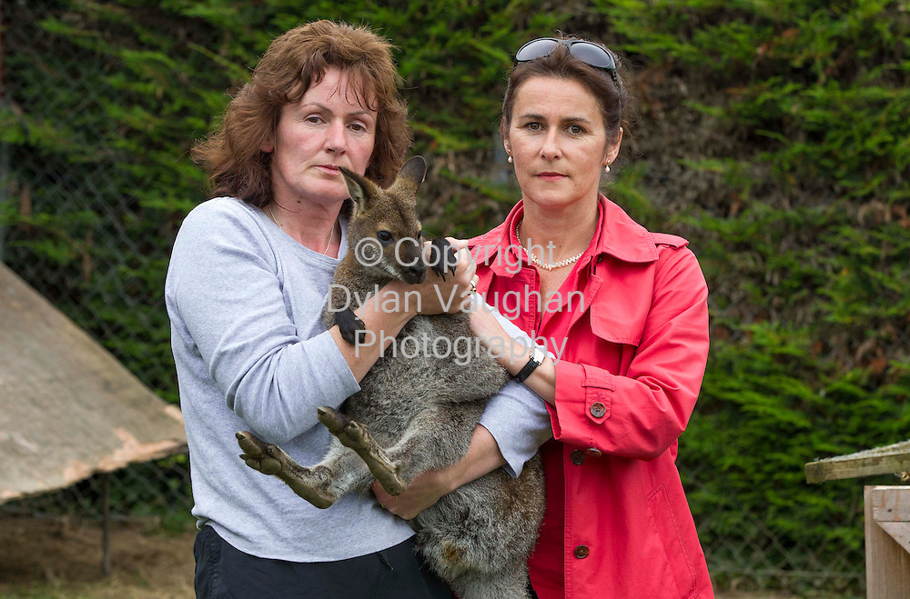 "7/9/2012.Helen Rothwell, company director (left) and Liz Nolan of Castelcomer Discovery Park with one of the wallaby's ""Skippy"" that was found after going missing from the park..Helen hand reared the wallaby's that went missing from the park..Picture Dylan Vaughan."