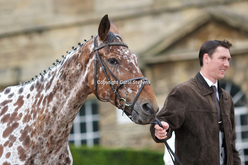 Bramham IHT 2012<br /> Final Inspection Equi-Trek CCI3* <br /> Tim Cheffings and Colby II