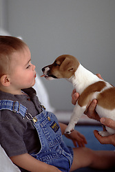 puppy about to like a baby's face