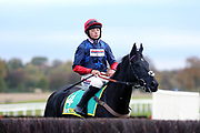 Bryony Frost on BLACK CORTON before The Class 1 bet365 Charlie Hall Steeple Chase over 3m (£100,000) during the Bet365 Meeting at Wetherby Racecourse, Wetherby, United Kingdom on 3 November 2018. Picture by Mick Atkins.