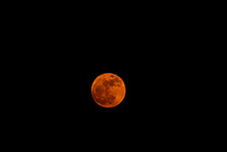 November 14, 2016 - Bhubaneswar, India - The Super Moon rising in the sky atop of eastern Indian city Bhubaneswar, India on Monday, November 14, 2016. (Credit Image: © Str/NurPhoto via ZUMA Press)