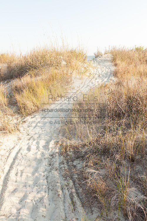 Beach path through the sand on Sullivan's Island, South Carolina.