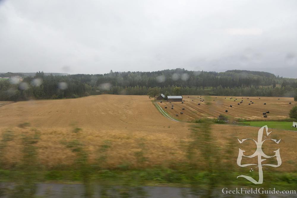 Also: hay bales. Lots of hay bales.