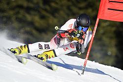 02.02.2011, Nici Hang, Lachtal, AUT, FIS Junioren Riesentorlauf, Men, im Bild // Stefan Brennsteiner (AUT) // during the men giant slalom race at the FIS Junior races in Lachtal, EXPA Pictures © 2011, PhotoCredit: EXPA/ S. Zangrando