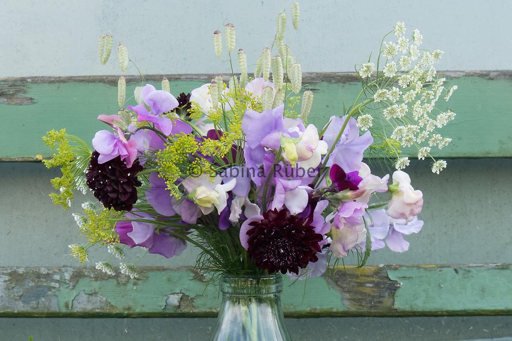 Flower arrangement with Ammi, Dill, Briza maxima, Scabiosa atropurpurea 'Black Knight' and Lathyrus oderatus: Bristol, Romeo, 'Summer Scent' mix