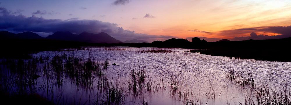 Photographer: Chris Hill, Roundstone Bog, Connemara