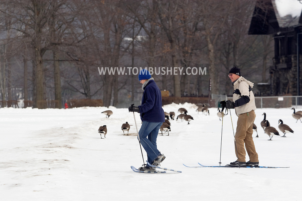 Bear Mountain, N.Y. - A woman uses snow shoes and a man uses cross country skis to cross a field at Bear Mountain State Park on  Feb. 20, 2007. Canada geese are feeding in the background.