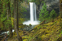 Big Creek Falls, Gifford Pinchot National Forest, Washington