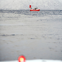 Norwegian fishing boat, Lofoten, Norway