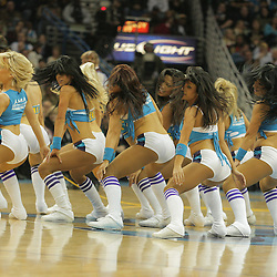 30 January 2009:  during a 91-87 loss by the New Orleans Hornets to Golden State Warriors at the New Orleans Arena in New Orleans, LA.