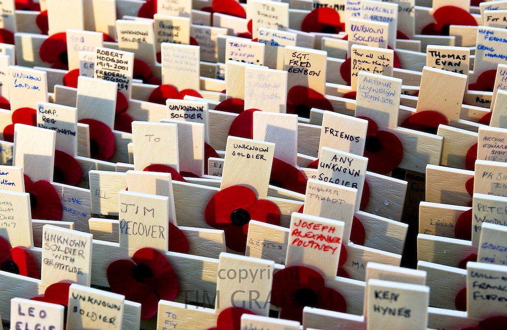 The Field of Remembrance at St Margaret's Church in Westminster.