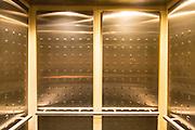 elevator interior at the Audubon Institute's Aquarium of the Americas