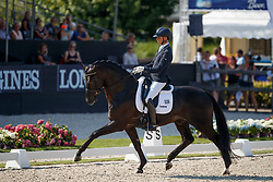 Veeze Bart, NED, Imposantos<br /> World ChampionshipsYoung Dressage Horses<br /> Ermelo 2018<br /> © Hippo Foto - Dirk Caremans<br /> 02/08/2018