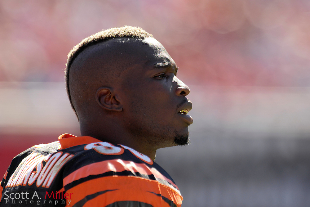 Oct. 15, 2006; Tampa, FL, USA;  Cincinnati Bengals receiver (85)  Chad Johnson on the sidelines during the second half against the Tampa Bay Buccaneers at Raymond James Stadium. ...©2006 Scott A. Miller