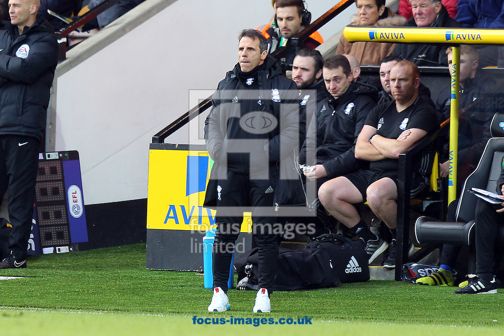 Birmingham City Manager Gianfranco Zola during the Sky Bet Championship match at Carrow Road, Norwich<br /> Picture by Paul Chesterton/Focus Images Ltd +44 7904 640267<br /> 28/01/2017