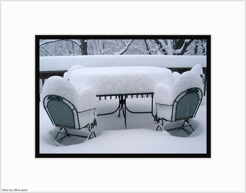 Winter's Picnic<br /> Jasper County, Missouri,<br /> Christmas Eve 2002<br /> &copy; Allena Yates<br /> <br /> 7D12