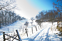 A beautiful, snow-covered meadow on a sunny winter's day in Brunegg, Aargau, Switzerland.