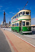 Blackpool Tower and Tram, Lancashire, N/W England