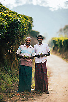 Munnar, India -- February 16, 2018: A portrait of two workers on a tea plantation.