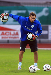 Goalkeeper of Slovenia Samir Handanovic (1) at practice of Slovenian men National team, on October 13, 2008, in Domzale, Slovenia.  (Photo by Vid Ponikvar / Sportal Images)