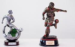 Sculptures of Ladislav Stanko and Marcos Tavares during NZS and PrvaLiga event before new football season in Slovenia, on June 23, 2011, in Hotel Kokra, Brdo pri Kranju, Slovenia. (Photo by Vid Ponikvar / Sportida)