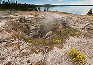 Fumarole near the edge of Yellowstone Lake lets off light steam, Yellowstone National Park, WY, © 2005 David A. Ponton